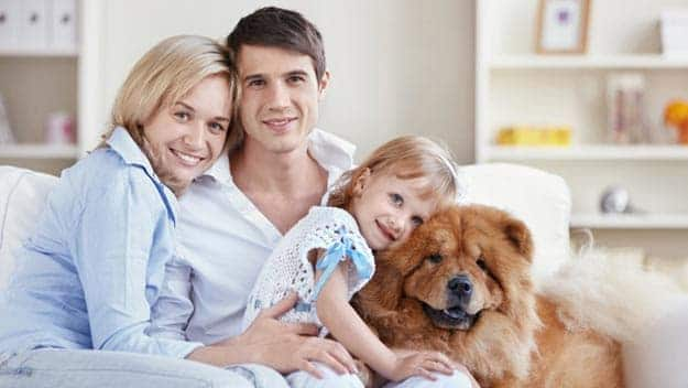 Wills & Trusts dog-young-family Direct Wills Rutland